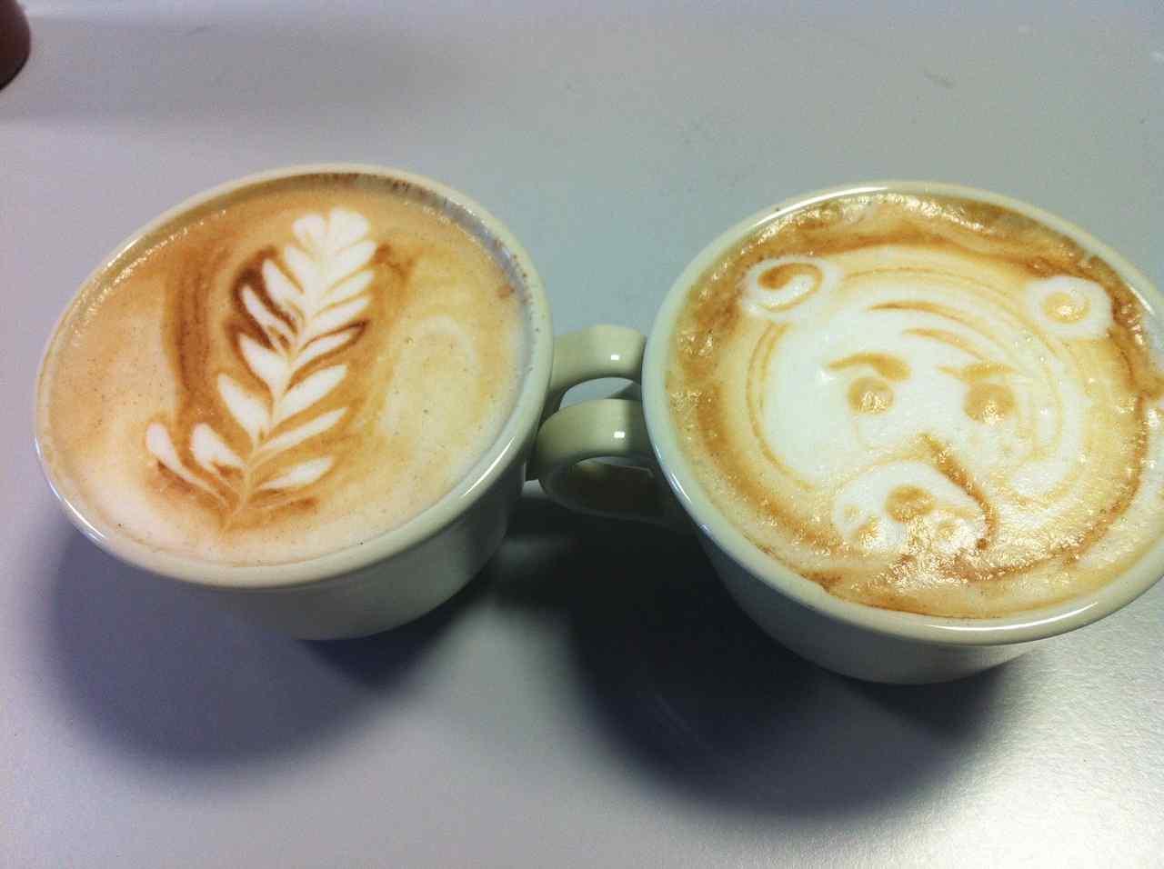 cata de café dromedario alcazarén