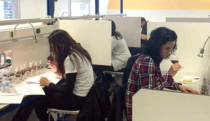 Alcazarén ya está al completo: centro de formación profesional con sala de catas
