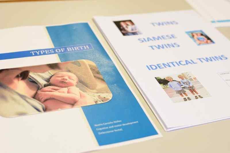 Trabajos sobre el desarrollo infantil en los periodos prenatales y el nacimiento