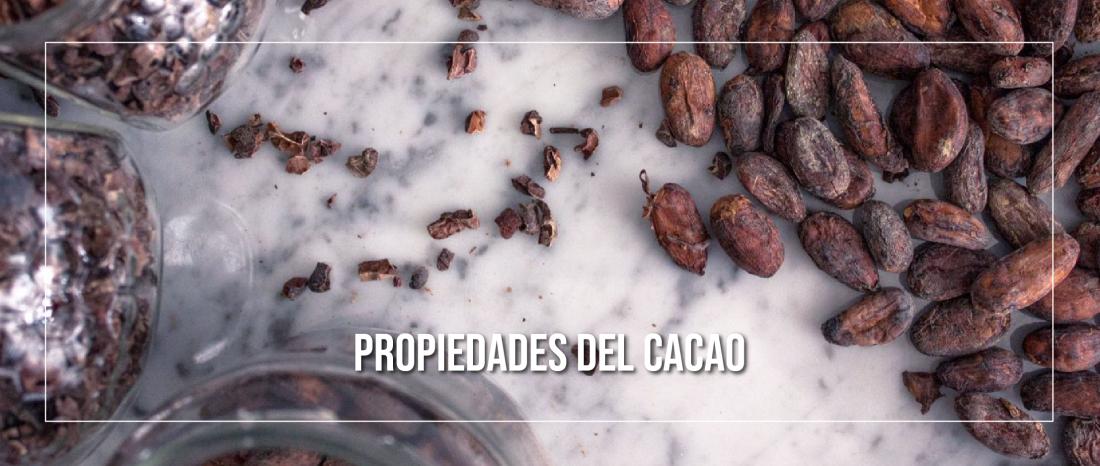 Propiedades del Cacao que puedes aprovechar en tu Cocina